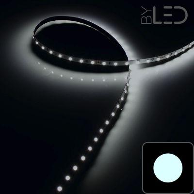Strip IP68 3528 60 LED/m Blanc - 4,8W/m