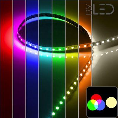 Strip IP20 - RGB & Blanc chaud - 19,2W/m