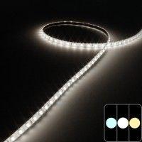 Mini ruban IP65 3528E - 5mm - Blanc - 7,6W/m - 96 LED/m - 5m